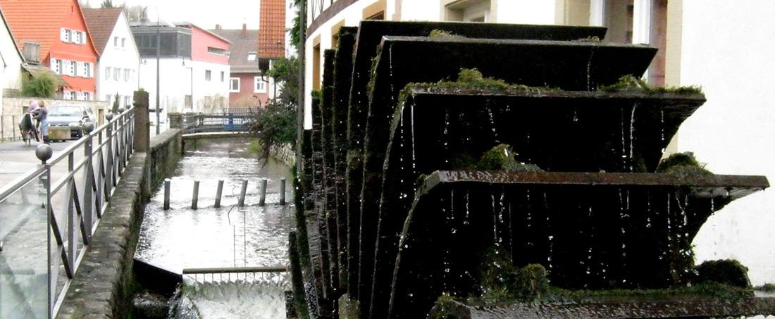 Unser Weingarten >>